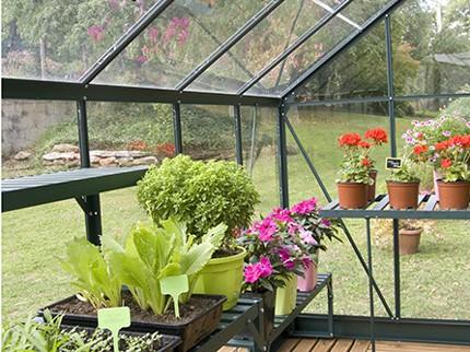 Idéale pour l'hivernage des plants
