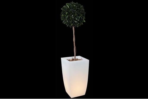 Pot ou jardinière lumineux