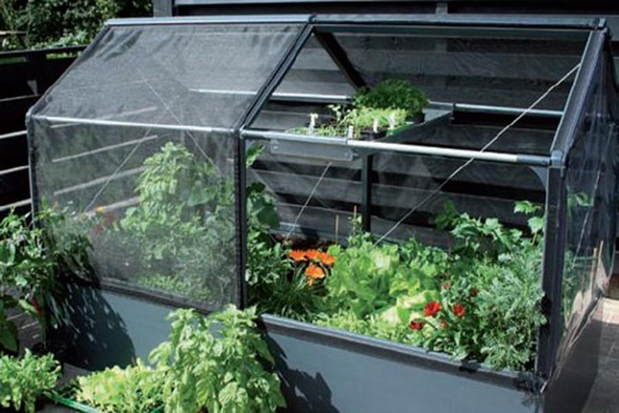 Extension pour serre rehaussée - Jardin Couvert