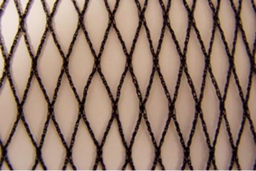 Filets anti-oiseaux 22 x 22 mm