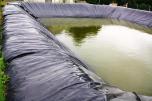 Bâche de bassin 350 g à la coupe