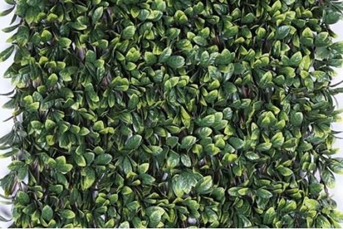 Treillis feuilles de Troène