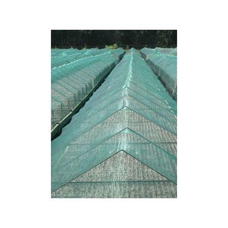 Filet anti-grêle 6 m x 100 m